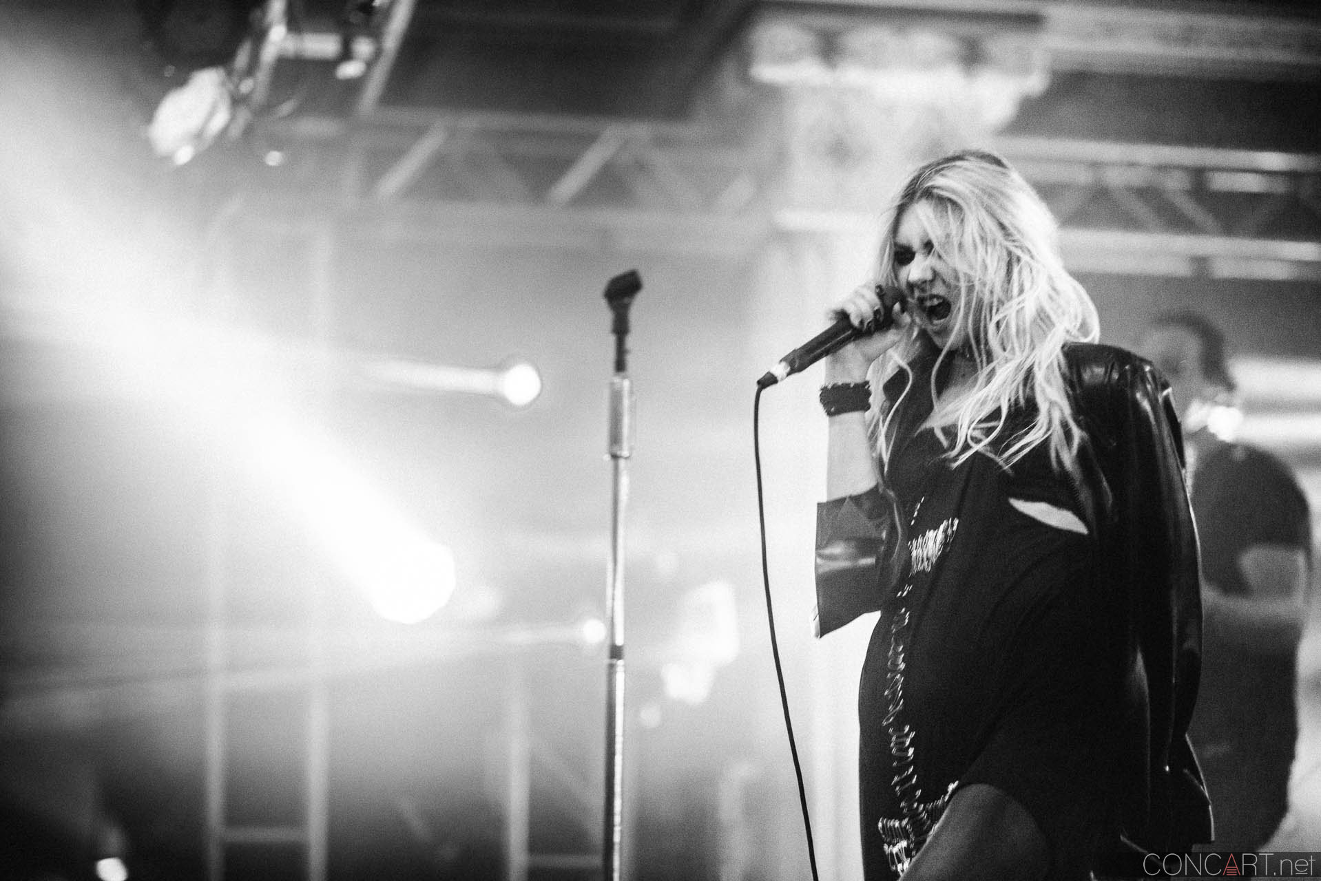 The Pretty Reckless photo by Sean Molin 39