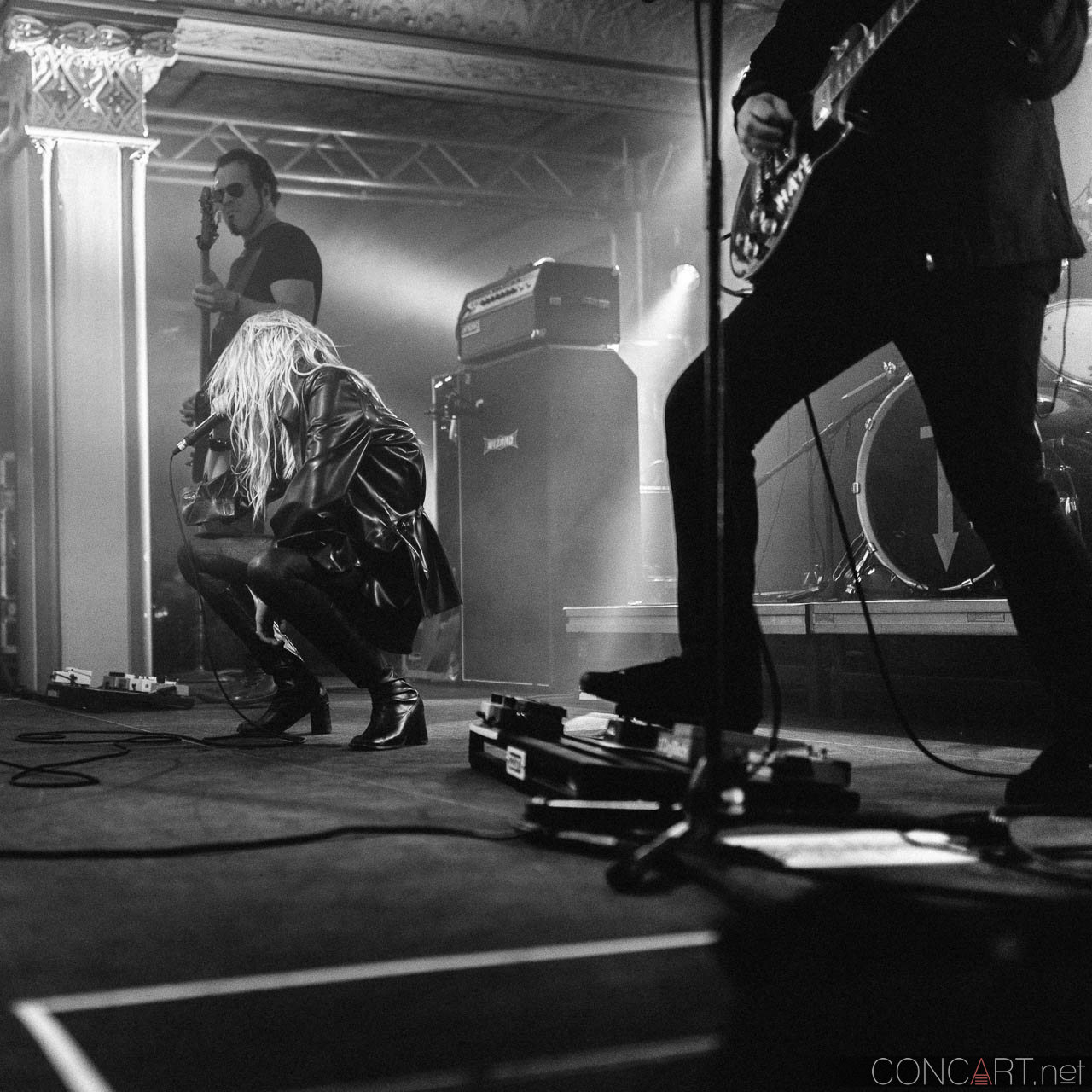 The Pretty Reckless photo by Sean Molin 26
