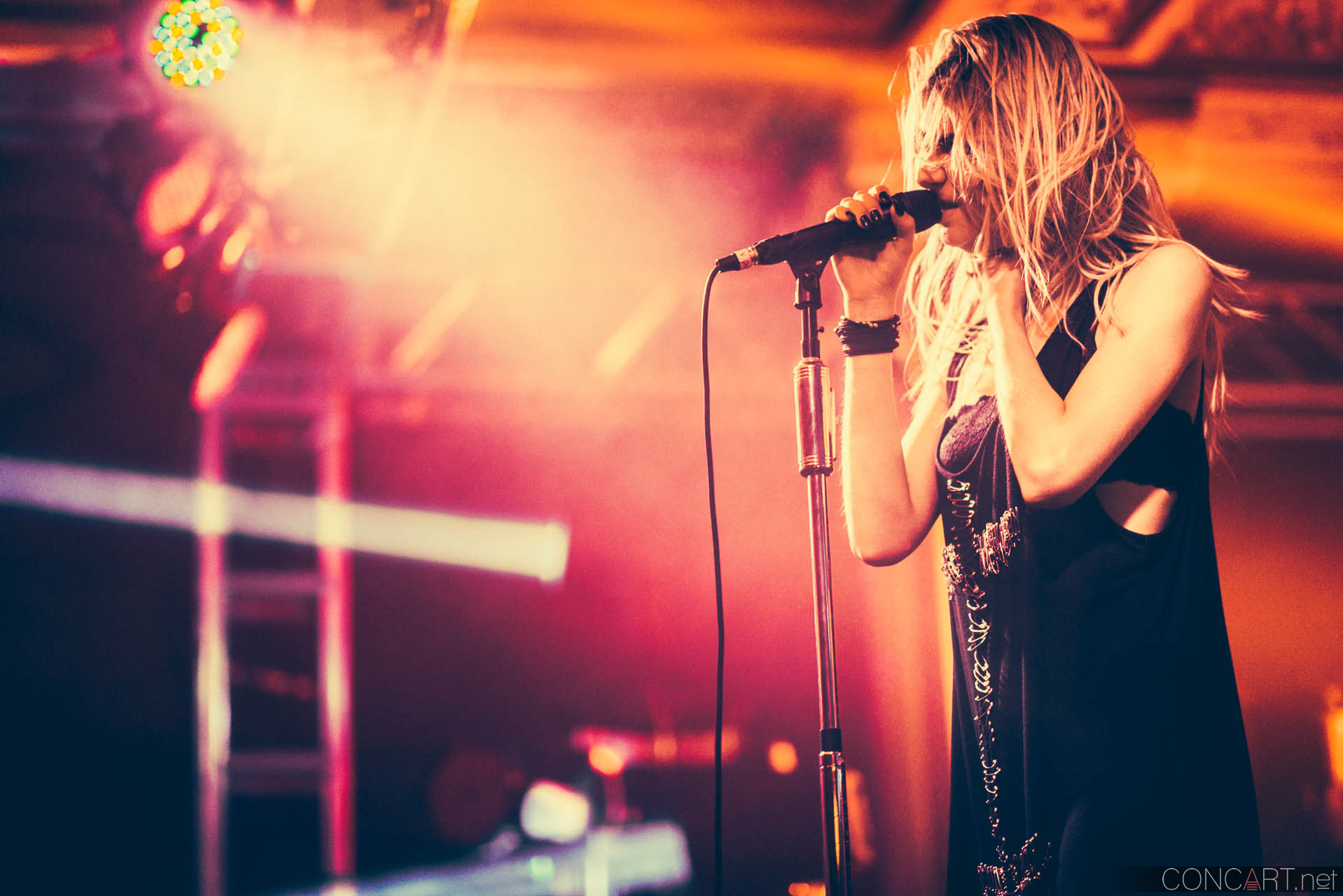 The Pretty Reckless photo by Sean Molin 23