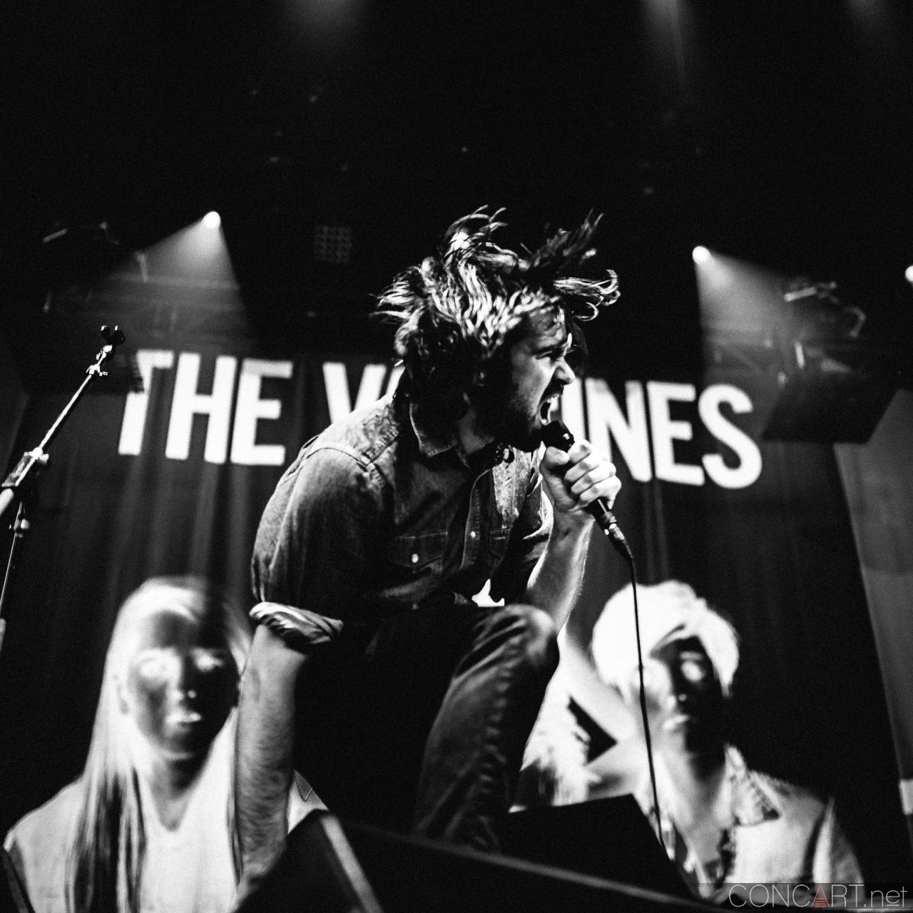 The Vaccines photo by Sean Molin 18