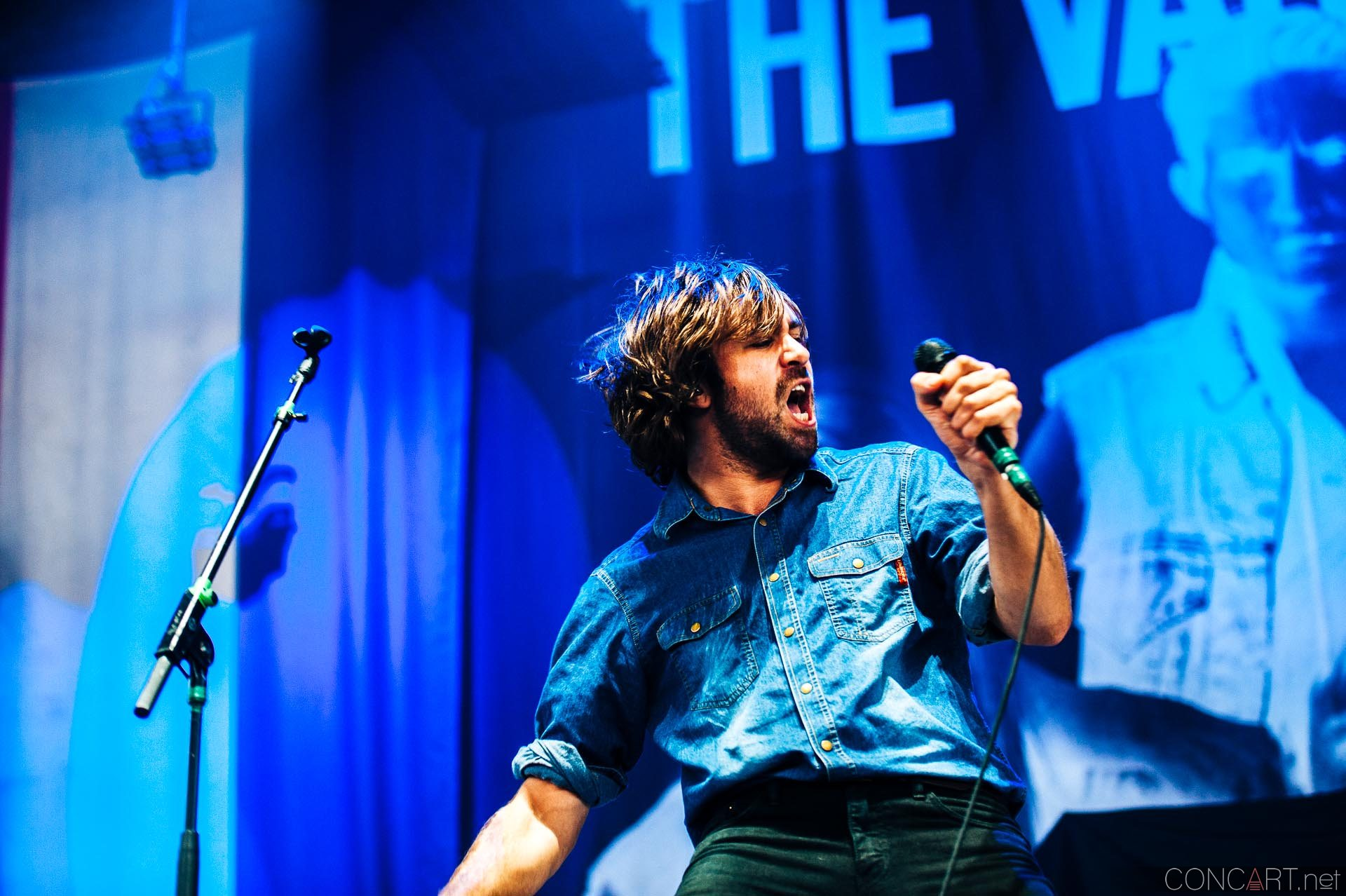 The Vaccines photo by Sean Molin 15