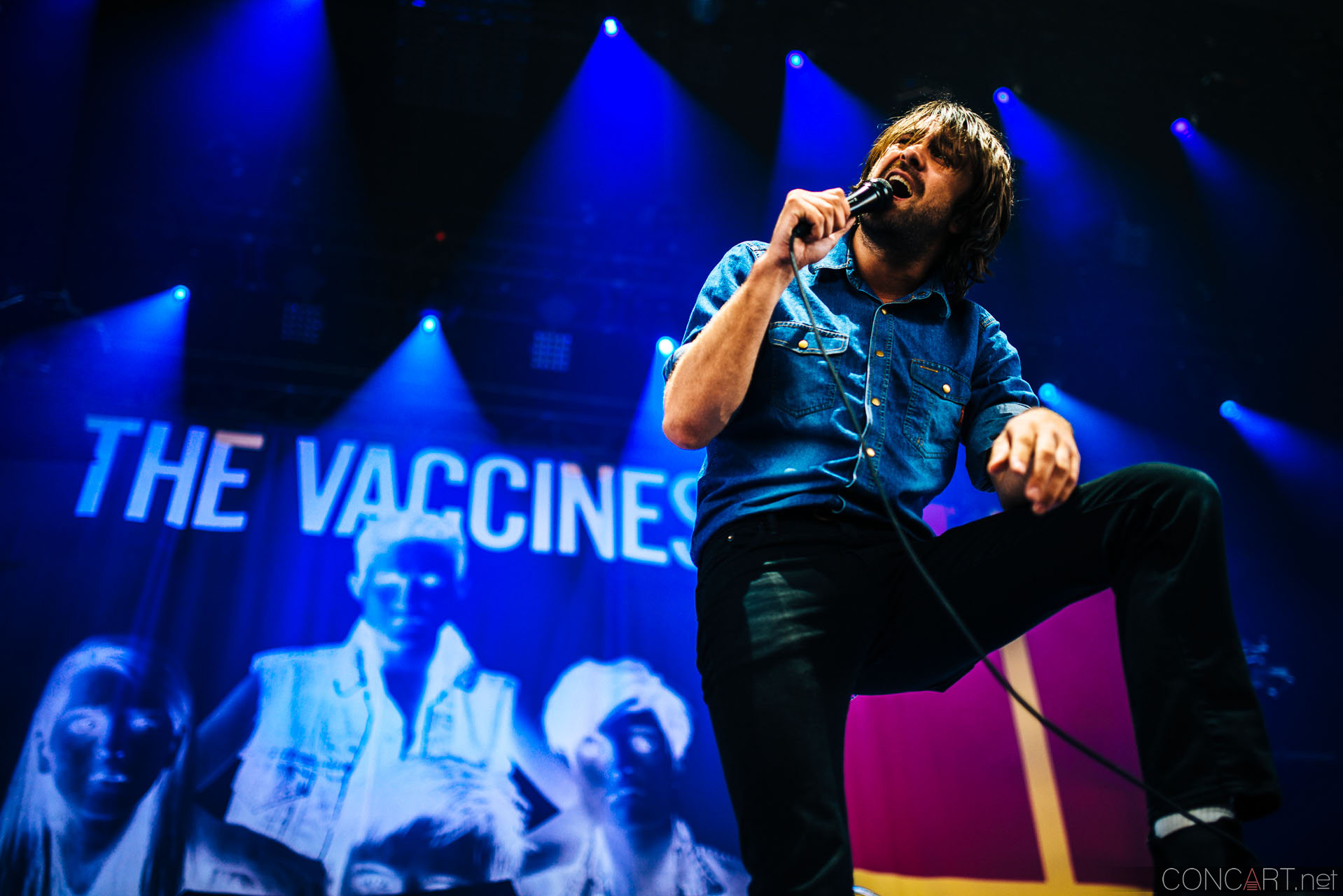 The Vaccines photo by Sean Molin 13