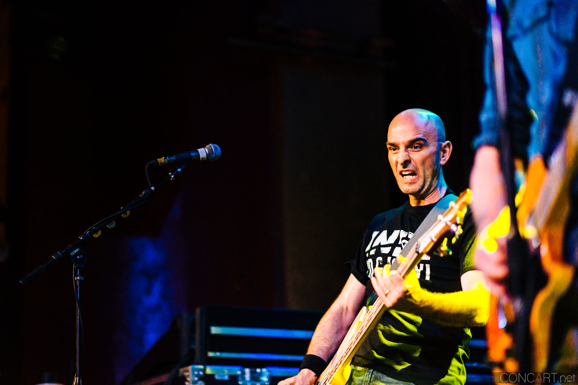 toadies_live_vogue_theatre_broad_ripple_indianapolis_2014-33