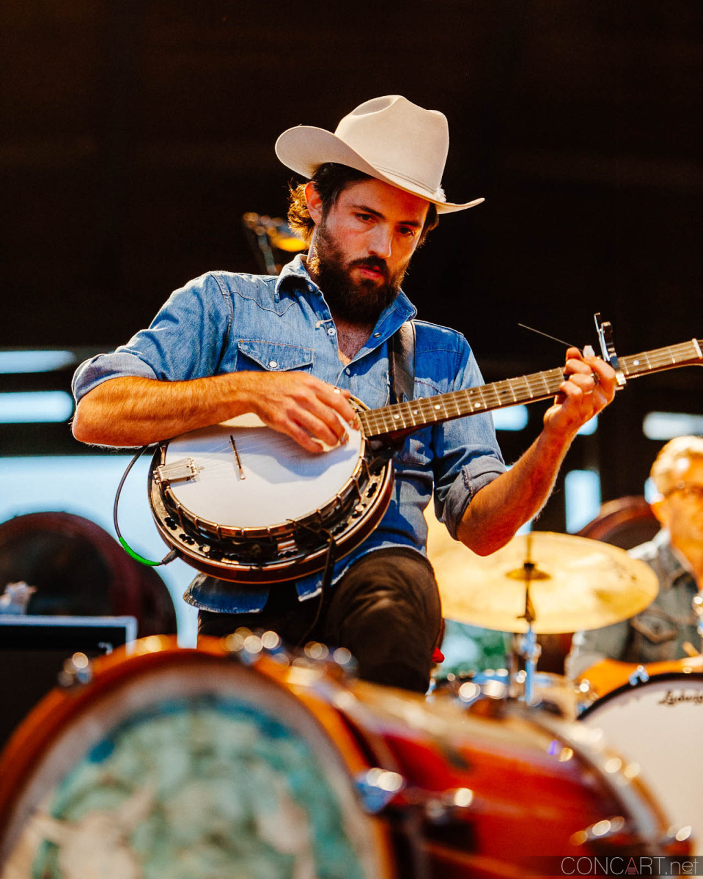 avett_brothers_lawn_white_river_indianapolis_2014-03
