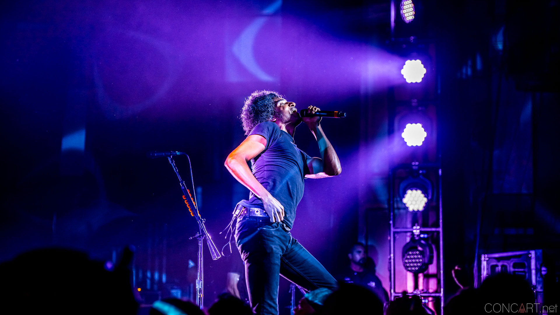 Alice In Chains photo by Sean Molin 28