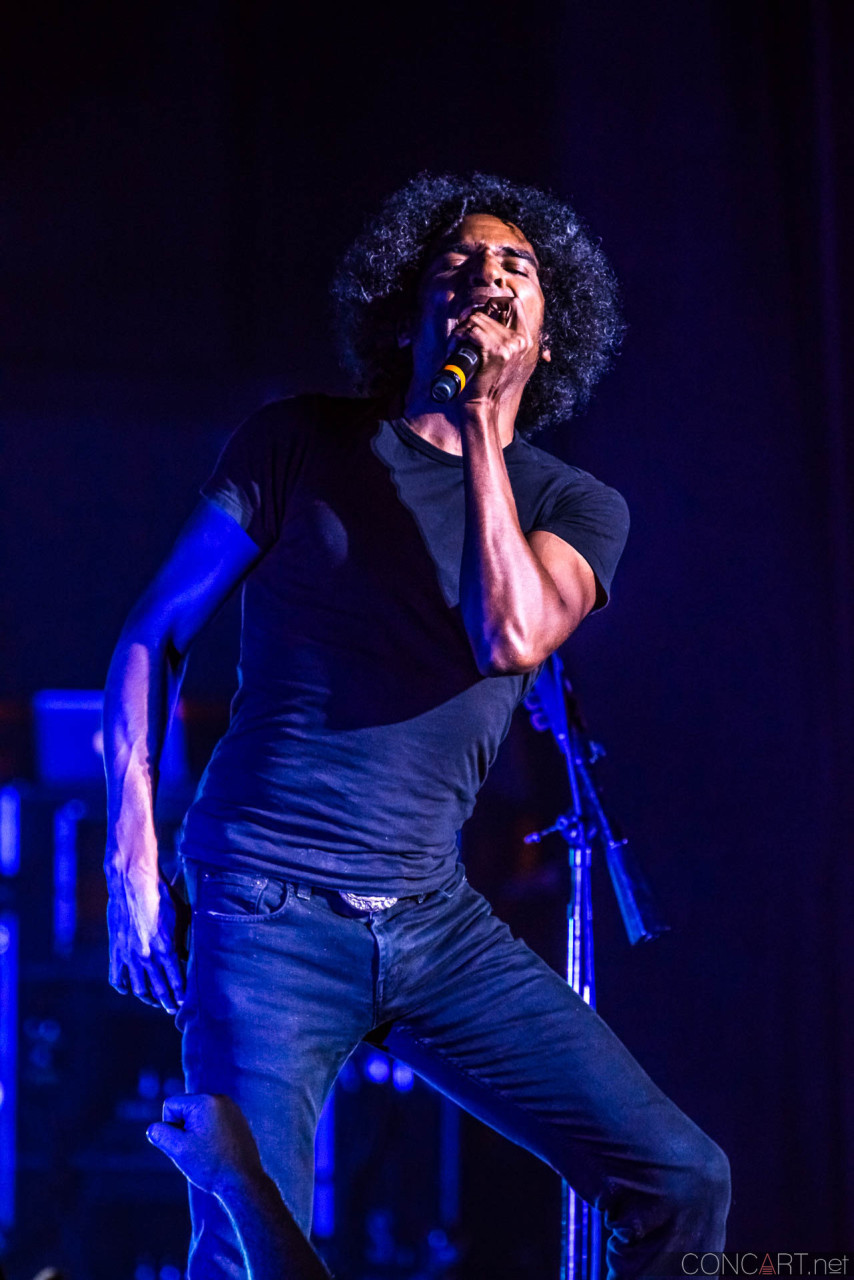 Alice In Chains photo by Sean Molin 18