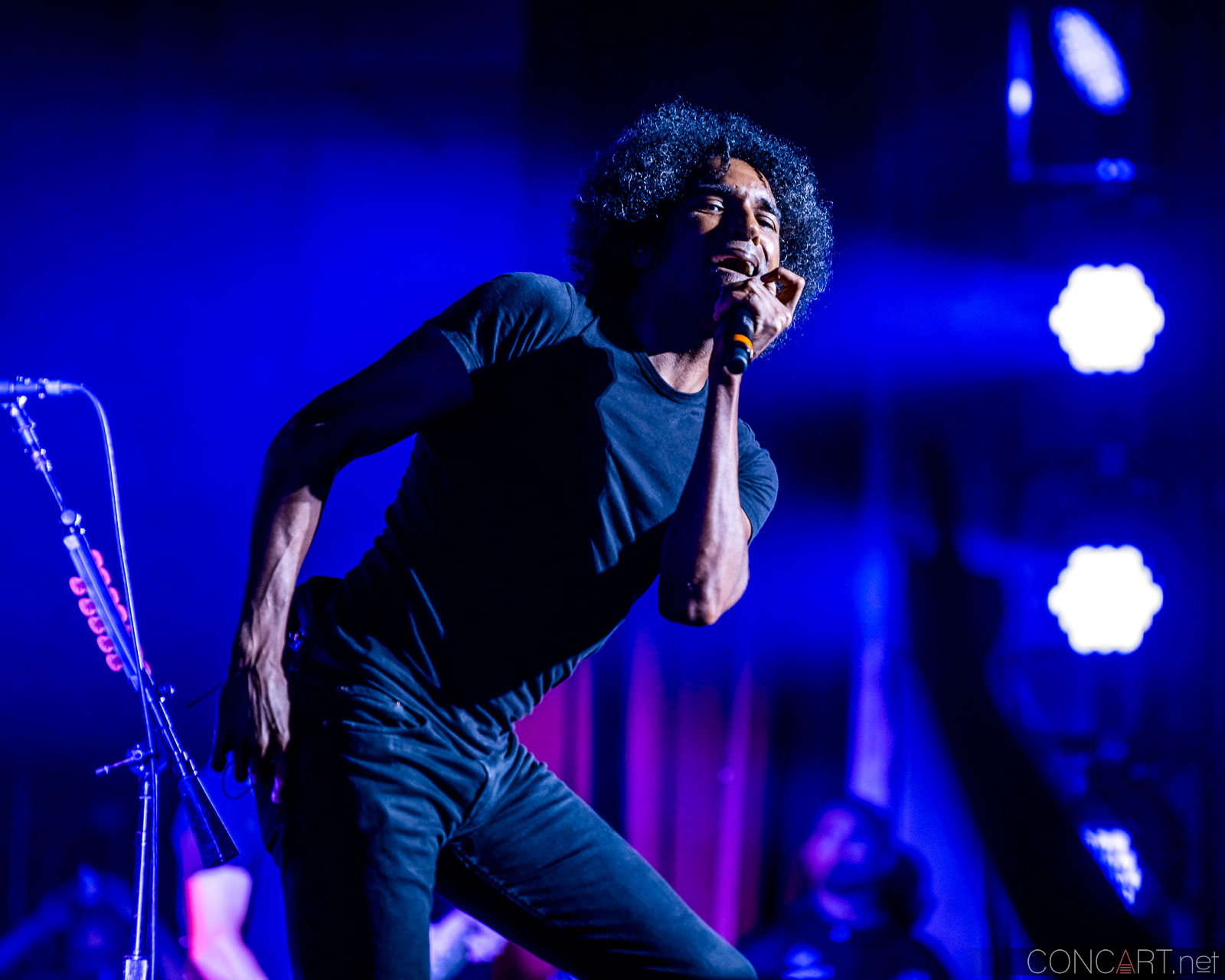 Alice In Chains photo by Sean Molin 11