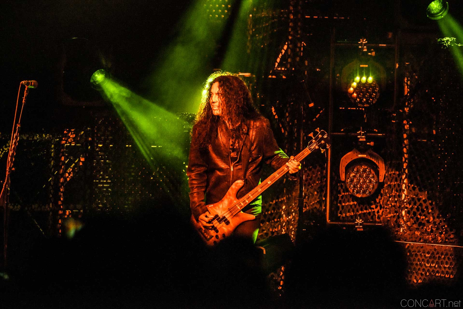 Alice In Chains photo by Sean Molin 10