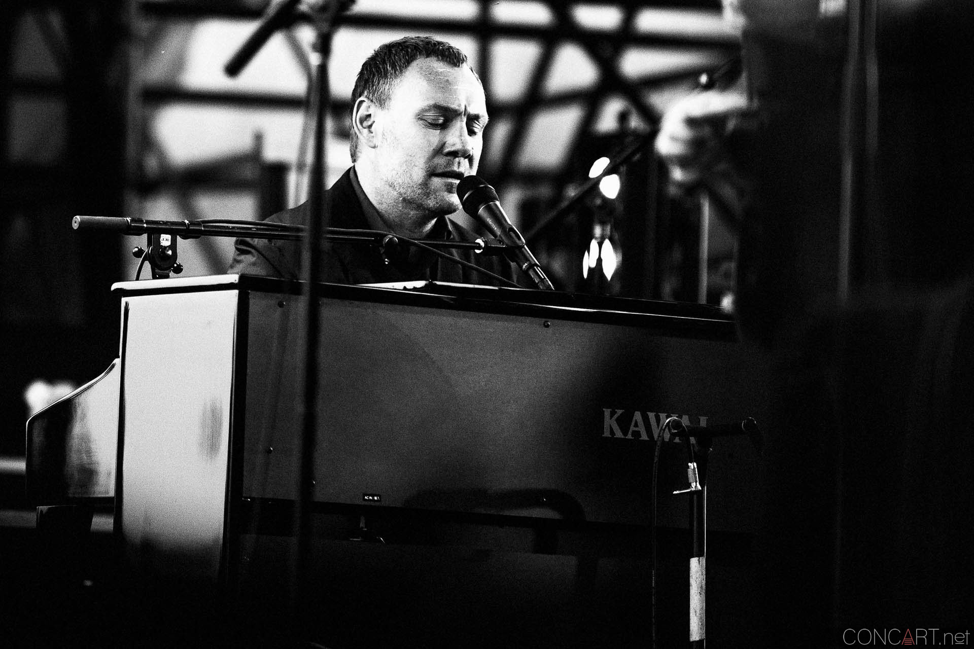david_gray_live_the_lawn_white_river_indianapolis_2014-11