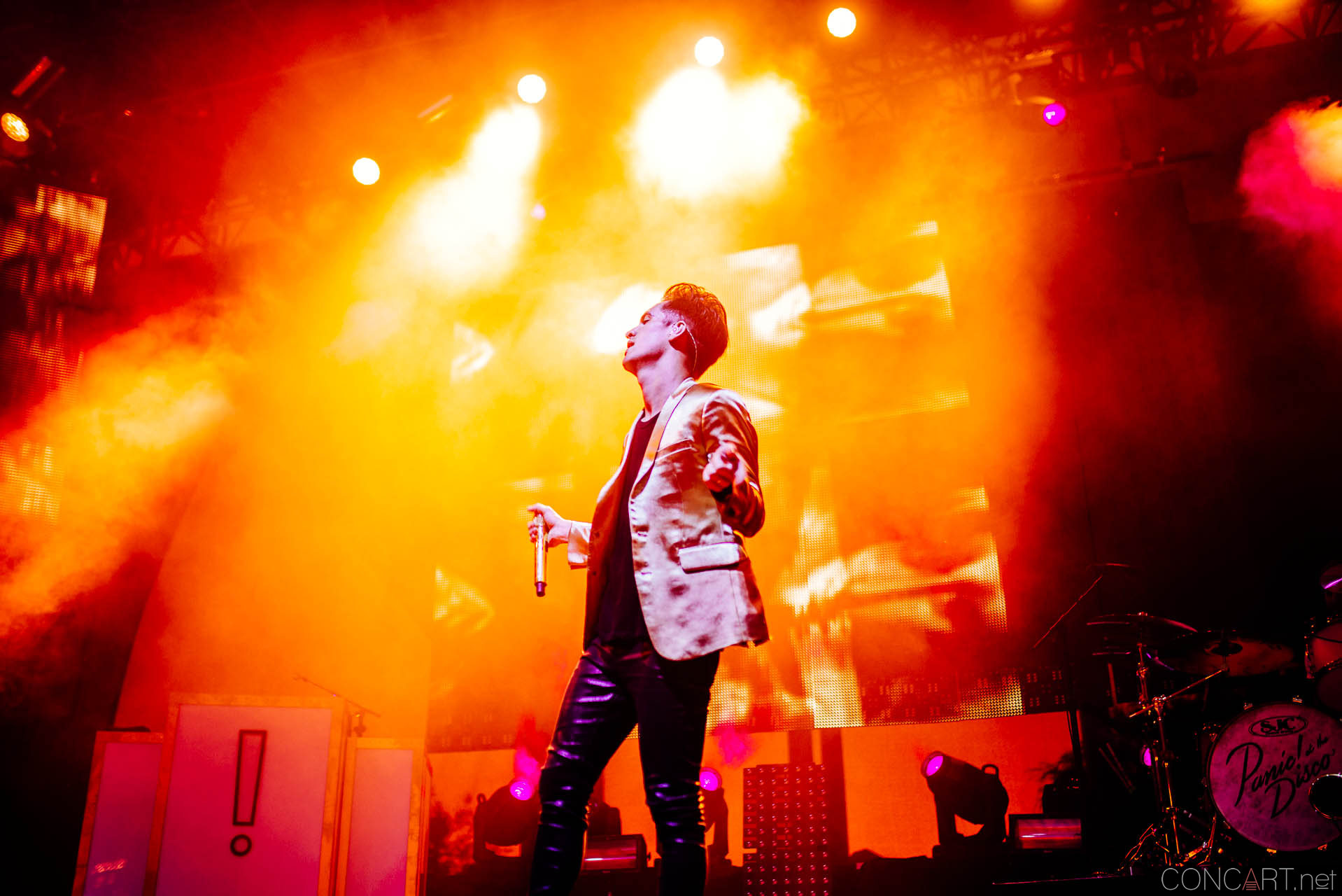 Panic! At The Disco photo by Sean Molin 36