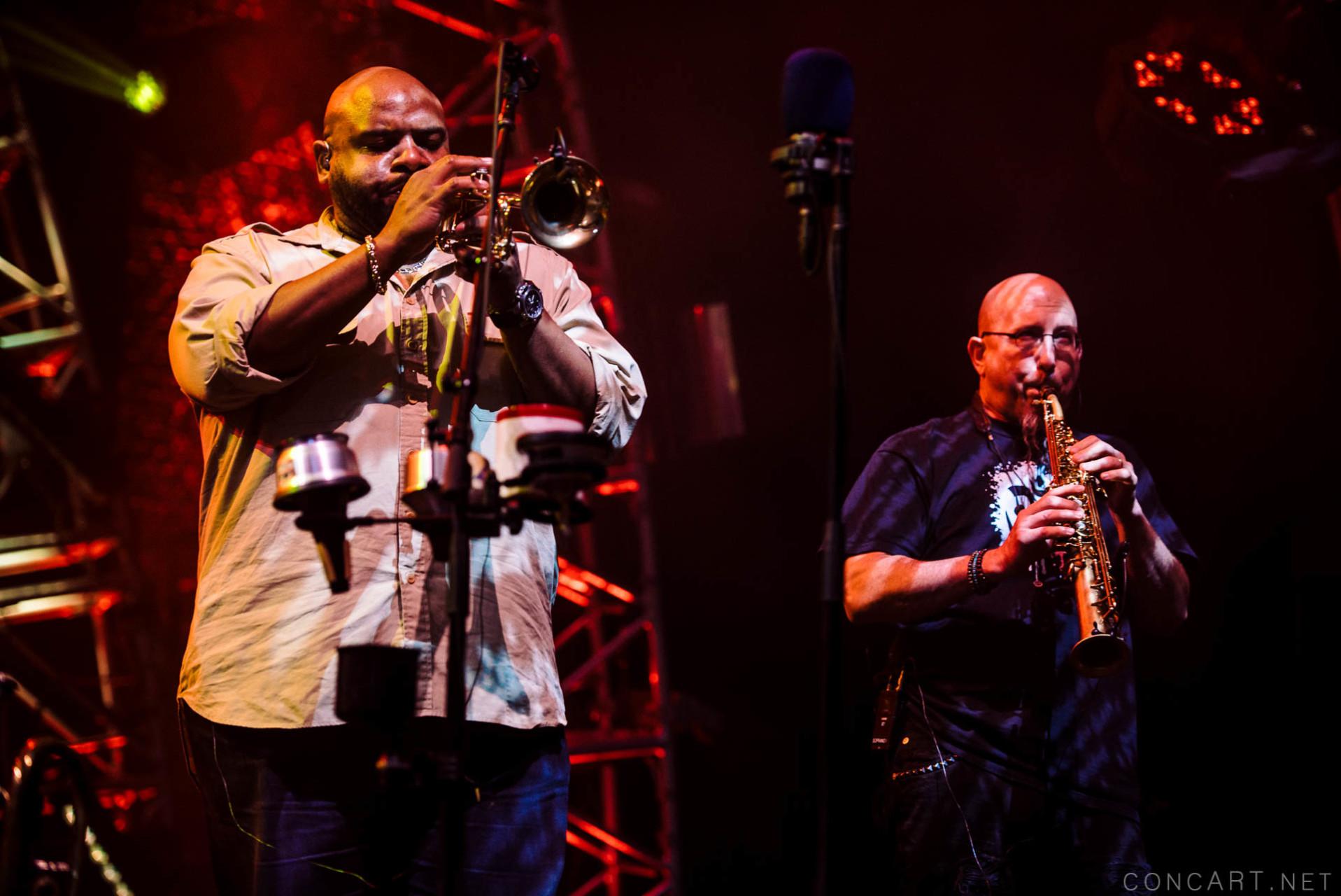 Dave Matthews Band photo by Sean Molin 20