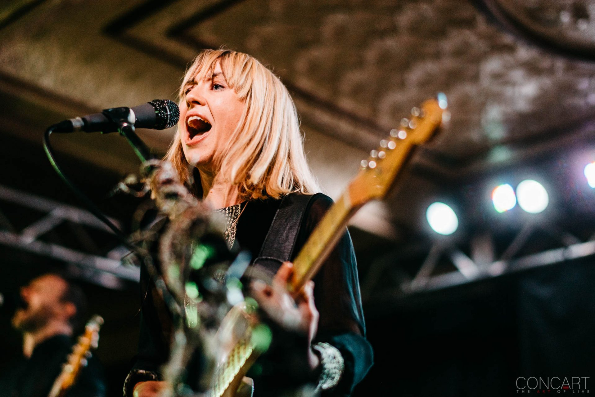 The Joy Formidable photo by Sean Molin 8