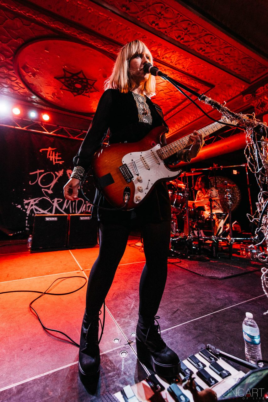 The Joy Formidable photo by Sean Molin 28