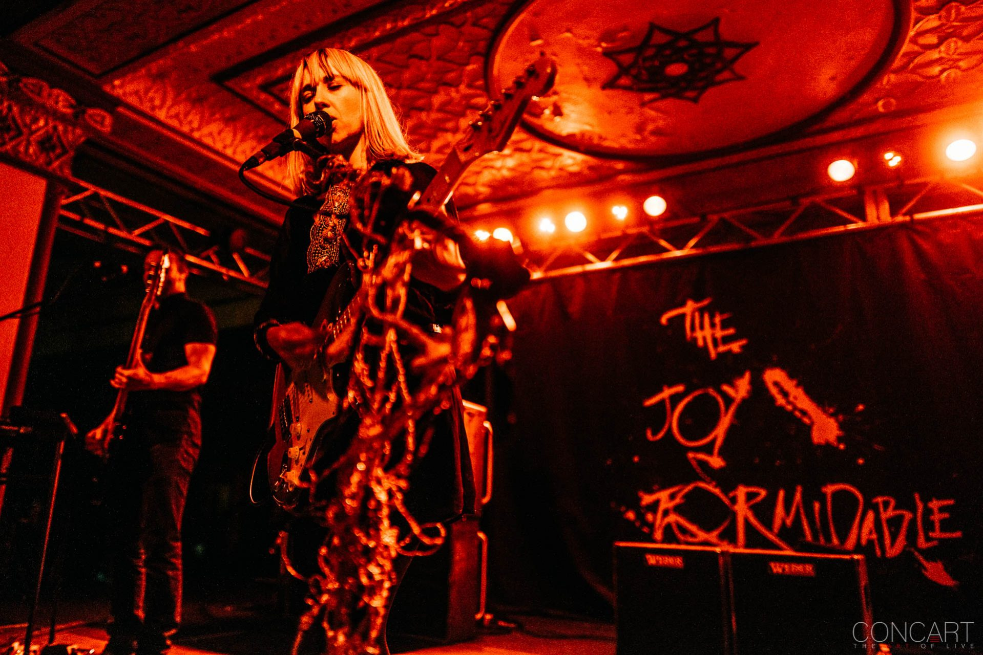 The Joy Formidable photo by Sean Molin 39