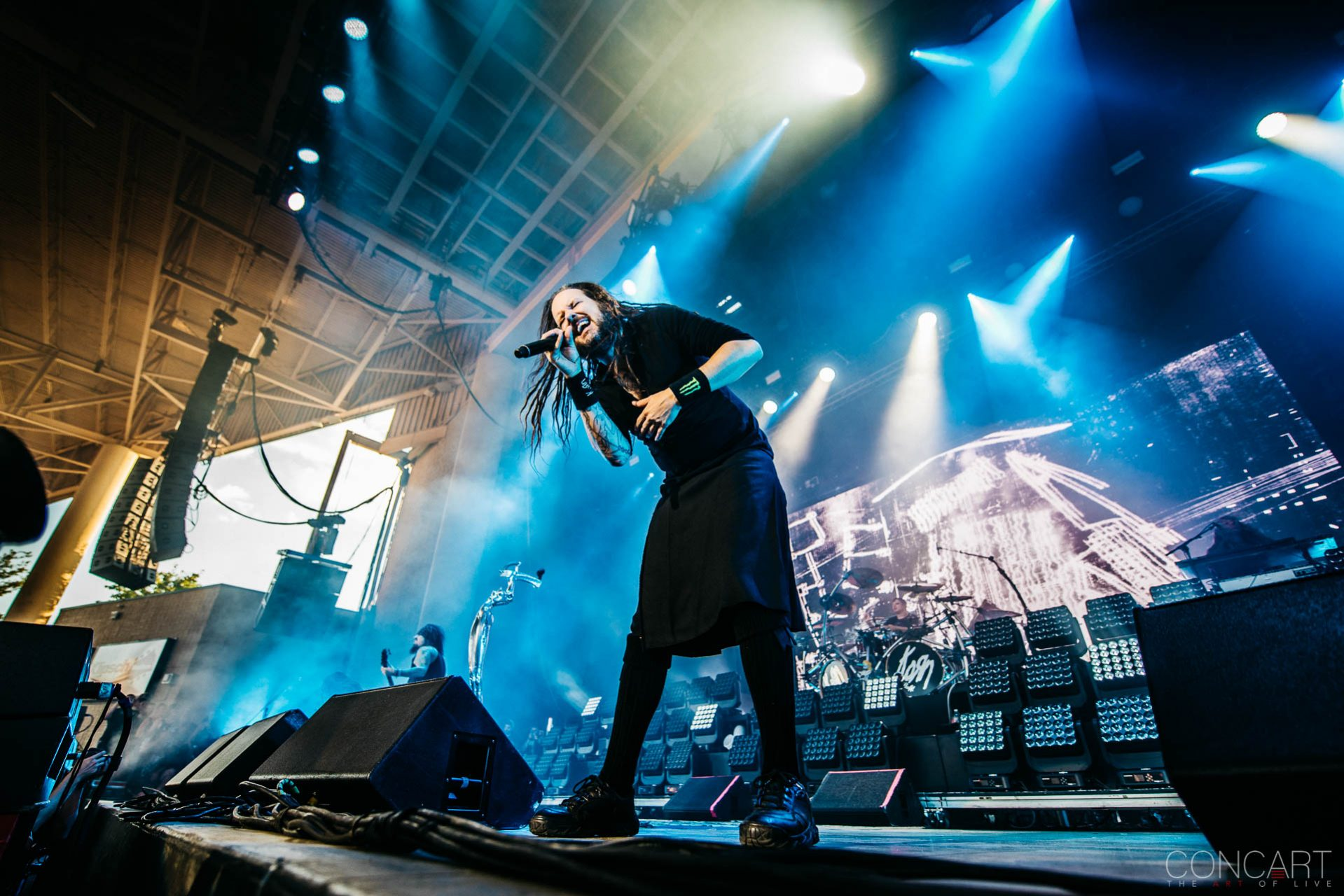 Korn photo by Sean Molin 25