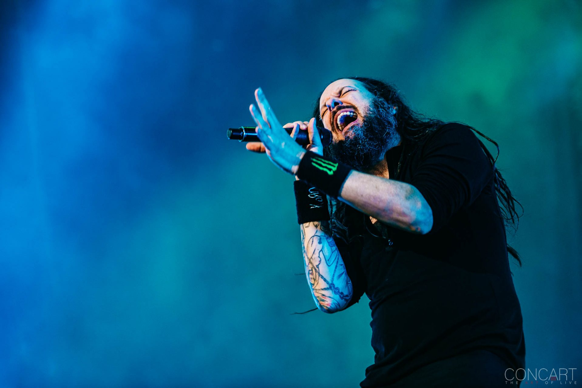 Korn photo by Sean Molin 45