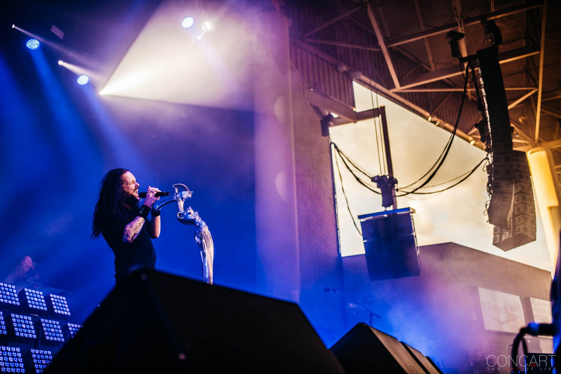 Korn photo by Sean Molin 49